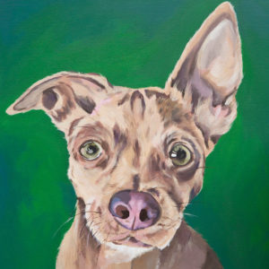A dog portrait by Mary Butler