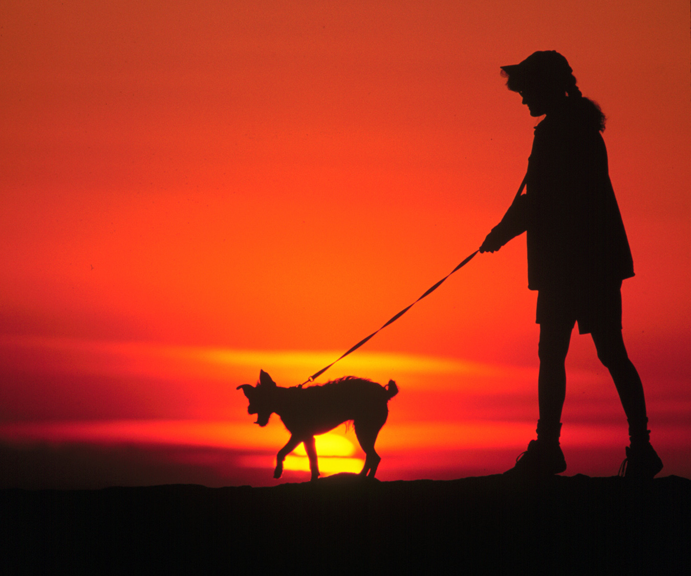 A woman walks her dog along a trail in the Boise Foothills.